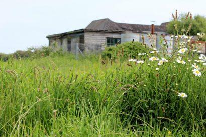 Lost duver garden pluto